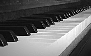 musica-vivo-portobello-gallura